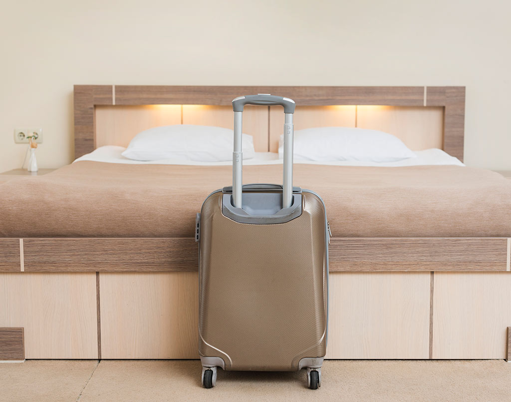 plagas-hoteles-sixsa