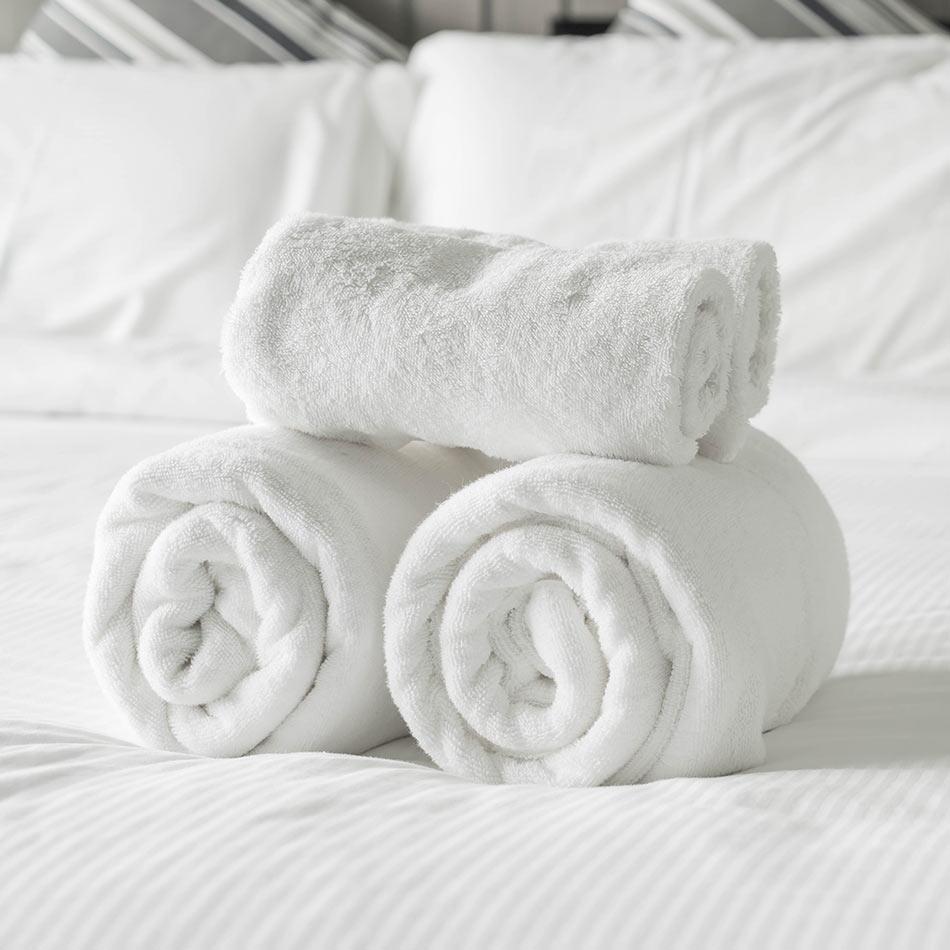 plagas-hoteles2-sixsa
