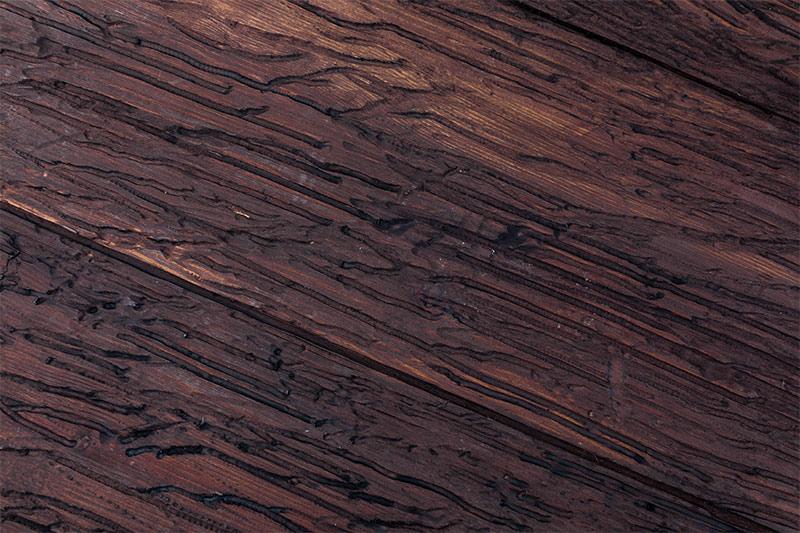 madera-infectada-de-carcoma-solucion-para-evitar-carcoma-sixsa
